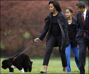 Michelle Obama says First Dog Bo is 'crazy'