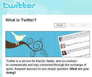 Many Twitters are quick quitters,finds study