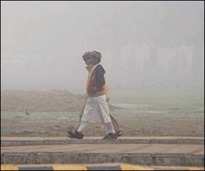 Thick smog in NCR leads to mishaps; 5 dead,7hurt