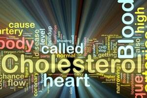 Delhi youth have high cholesterol levels: Study