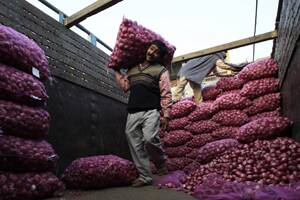 Import duties on onion abolished; exports banned