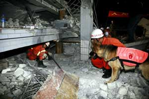M_Id_204102_China_quake