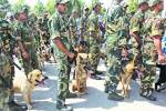 Odisha: Sniffer dog injured in IED blast to be sent to Chennai fortreatment