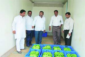 Soon,horticulture train for perishablecommodities