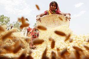 Foodgrain production all timehigh