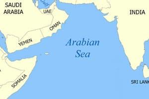 Pirates seize Liberian vessel,11 Indians among 26abroad