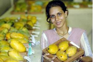Mangoes exports to US may grow by 43% this year