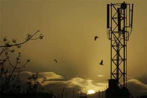 Telecom stocks surge in morningtrade