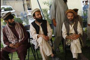 Afghans reluctant to act against militant havens:report