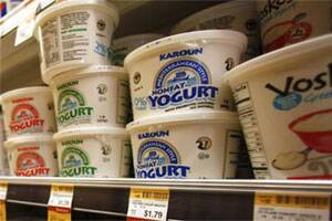 'Diet powder' in yogurts and smoothies help suppress hunger
