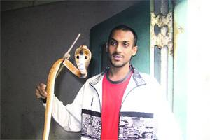Meet the IIT Bombay snakecharmer