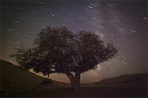 'Fireball' meteor streaks across USsky