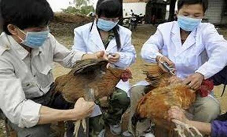 Woman infected with bird flu virus delivers healthychild