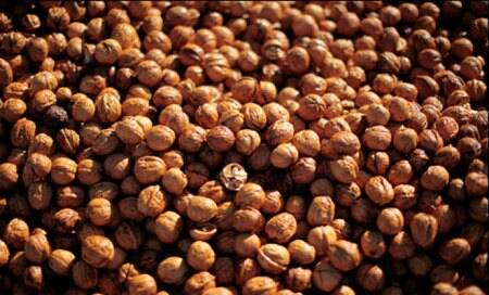 Health food: Walnuts may prevent diabetes and heartdisease