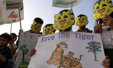 Two school kids launch website to save tigers