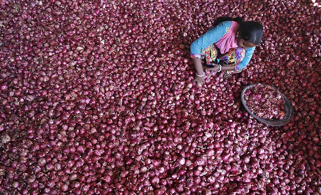 M_Id_435902_Onion_prices