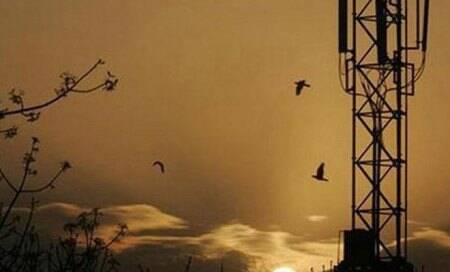 Telecom Commission wants base spectrum price raised by up to 25%