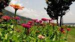 Unexplored Kashmir: Gurais valley