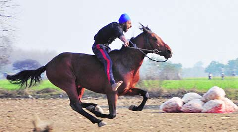Kila Raipur: Animal Welfare Board asks DC to stop horse, dog races