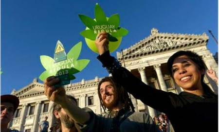 Uruguay becomes world's first country to legalise marijuana trade