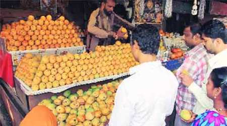 mango prices, mango production, mango crop loss, mango season