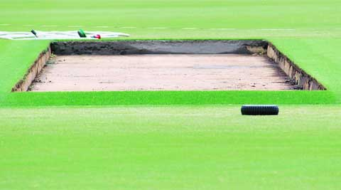 The Outer Oval pitch has been transported to Eden Park for the One-day International.  DAKSH PANWAR