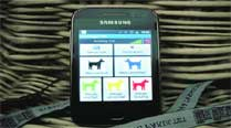 The teams will categorise dogs with the help of an app.
