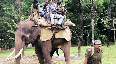 Forest officials patrol the area on an elephant. Express