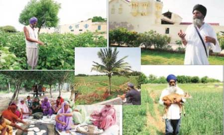 Outsiders in Kutch's mini-Punjab: Sikh farmers battling for theirland