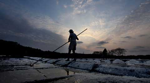 Salt Pan workers protected salt in the forth comming monsoon season at Manori village on Monday.  Vasant Prabhu