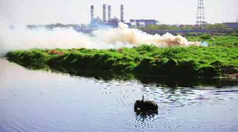 100 pc sewage treatment under ambitious anti-pollution program
