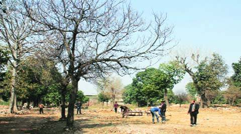 The land in question in Ludhiana on Monday.(Gurmeet Singh)
