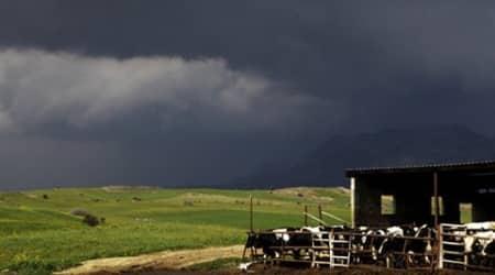 El Nino threatens to return, hit global foodproduction