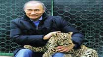 Vladimir Putin holds a Persian leopard at the Sochi national park Tuesday. (Reuters)