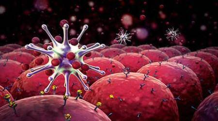 Immune cells undergo 'spontaneous' changes on a daily basis that could lead to cancers