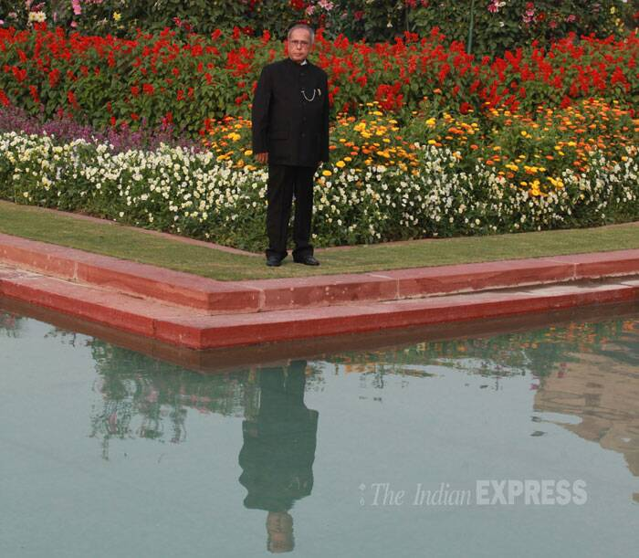 "President Pranab Mukherjee opened the annual ""Udyanotsav"" of the famous Mughal Gardens which has this year a delicate addition in the form of tulips imported from Holland. (IE Photo: Renuka Puri)"