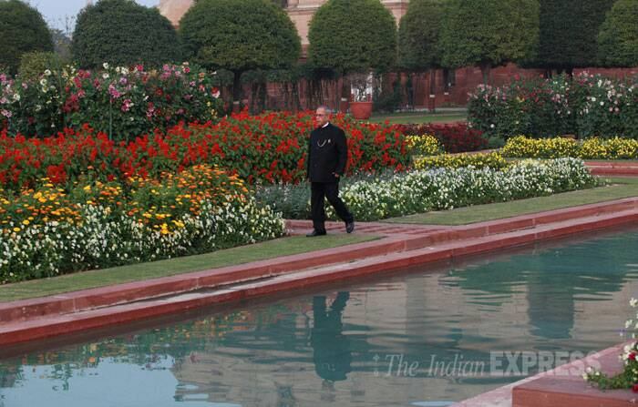 The Mughal Gardens, which braved the unseasonal rains without any damage, will remain open for general public from February 16 to March 16, 2014 (except on Mondays which are maintenance days) between 10 am to 4 pm, a statement from the Rashtrapati Bhavan said. (IE Photo: Renuka Puri)