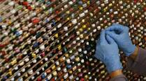 US 'not targeting' Indian pharma companies, says FDAchief