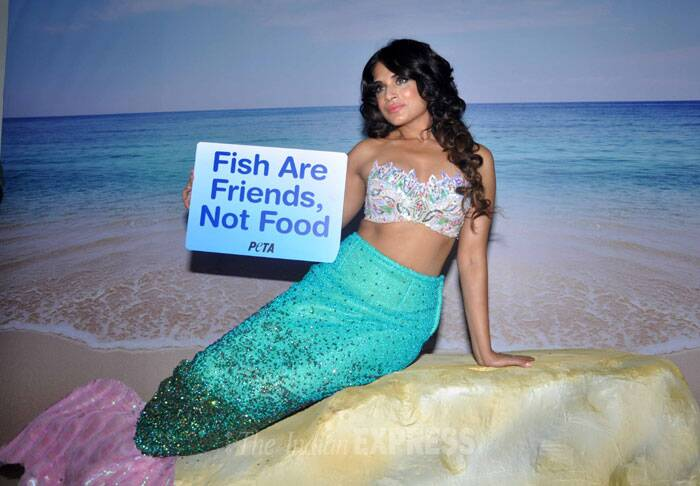 'Ram Leela' actress Richa Chadda showed off her mid-riff as she donned a mermaid costume for a PETA ad. (Photo: Varinder Chawla)
