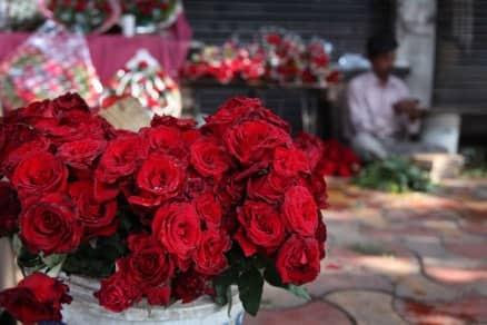 hindu mahasabha, valentines day