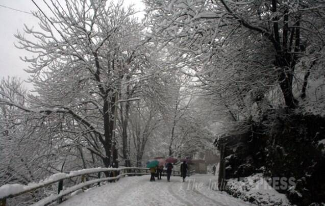 Snowfall continues in Shimla