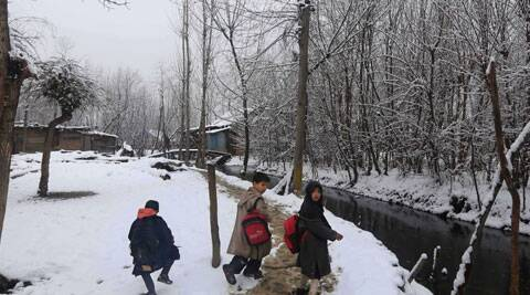 The higher reaches of Kashmir Valley and Ladakh region received fresh snowfall on Monday. (AP Photo)