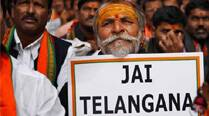 Telangana bill passed in LS,  India's 29th state comes into being