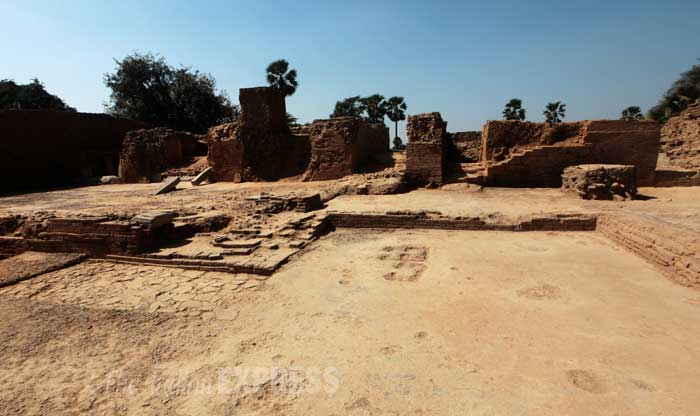 The Bihar government has been calling the Telhara project one of its biggest after the excavations that unearthed Nalanda and Vikramshila universities. The excavation at Telhara should have happened earlier, say experts, but the site lost out to the more famous Nalanda. (IE Photo: Ravi S Sahani)