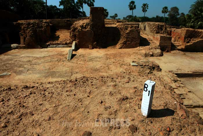Though there was this and more proof that Telhara could be sitting on a glorious past, it wasn't until December 2009 that the excavations finally began. Telhara panchayat head Awadhesh Gupta claims to have been the one who got things started. (IE Photo: Ravi S Sahani)