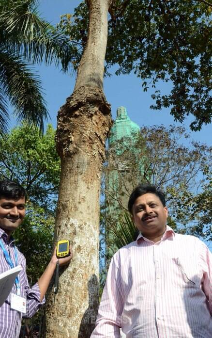 Armed with hi-tech gadgets, BMC begins tree count