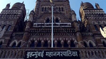 BMC's Tree Authority members said they will take up the issue during the next meeting in May.