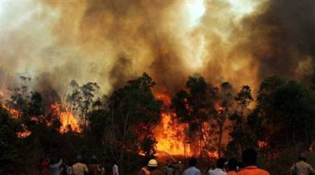 Fire personnel dousing the blazing fire at Tirumala forest in Tirupati on the second day on Wednesday. (PTI photo)