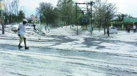 Several farmers have reportedly committed suicide in the state after their crops were damaged by the severe hailstorm. Maharashtra has suffered more than Rs 5,000 crore of agricultural loss. IE
