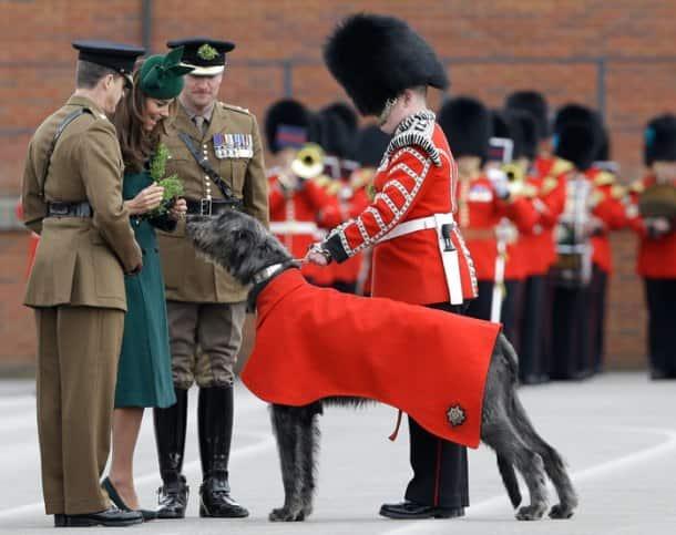 Kate Middleton goes green